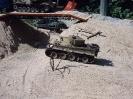 Tiger 1_6