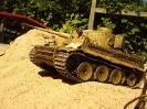 Tiger 1_9