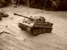 Tiger 1_3