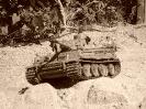 Tiger 1_10
