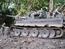 Tiger1_2